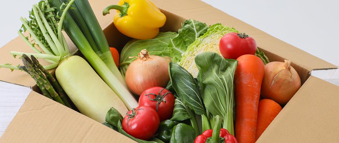 野菜を配達してもらえる食材宅配サービス